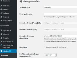 Como asignar la URL canónica en Wordpress