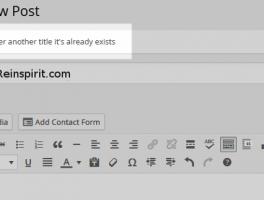 Como evitar los titulos duplicados en WordPress