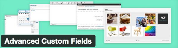 plugin-advanced-custom-fields