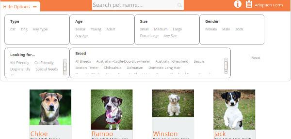 buscador mascotas adopcion