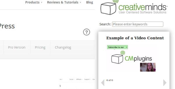 ejemplo menu de ayuda wordpress