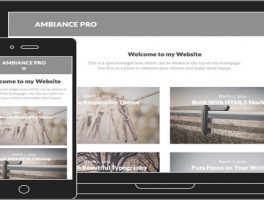 Los 8 Mejores Temas Responsive para Fotógrafos de WordPress