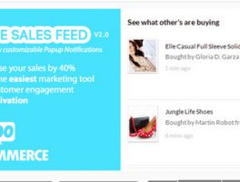Como mostrar las ventas en tiempo real de una tienda con WooCommerce