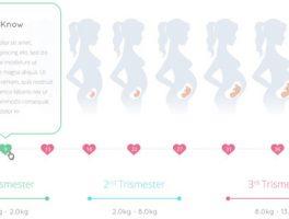 Como crear un sitio web para embarazadas de éxito con WordPress