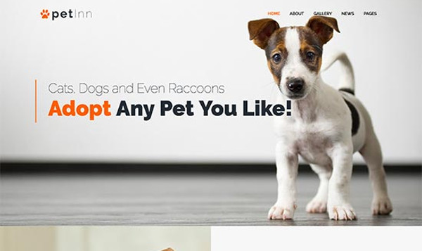 16 mejores temas de WordPress para animales y mascotas