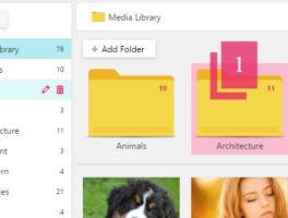 Plugin Organizador de Carpetas en Biblioteca de Medios para WordPress