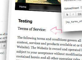 Plugin Términos de servicio y política de privacidad en Inglés con WordPress